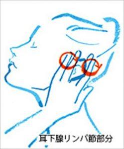 画像引用:http://www.wellba.com/dlm/contents/images/sleep2s.jpg